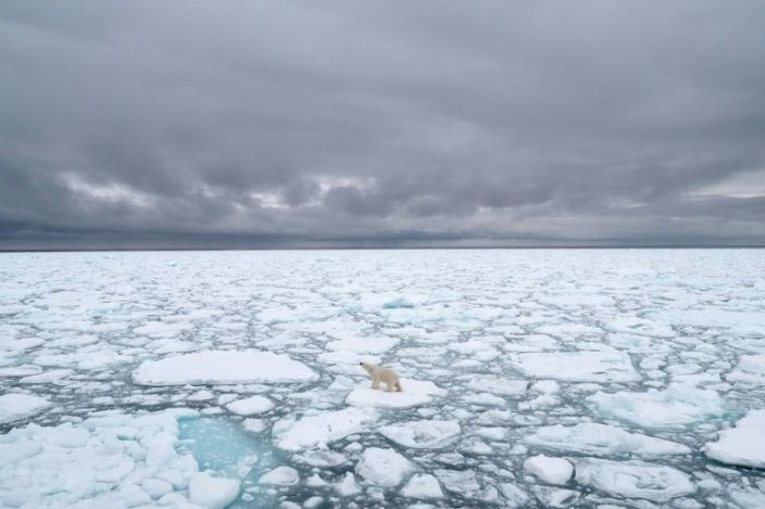 The effects of a warming world are already apparent. Photo: AFP