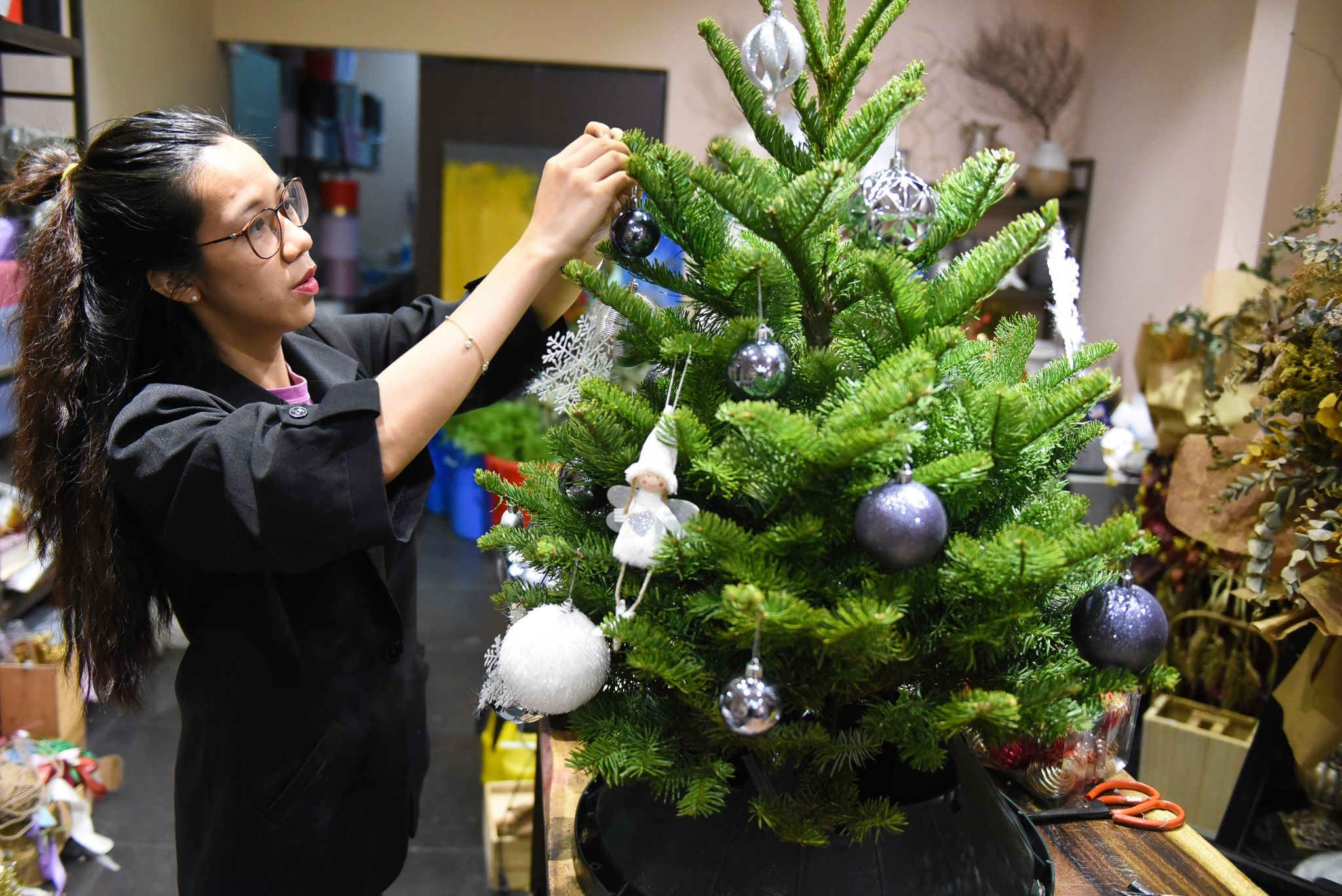 Vu Hong Hanh, manager of a shop on District 3's Vo Thi Sau Street, is preparing a noble fir imported from the U.S. Photo: Ngoc Phuong/ Tuoi Tre News