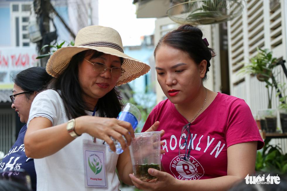 Women are decorating the bonsai space along with aquarium fish. Photo: Huu Huong / Tuoi Tre