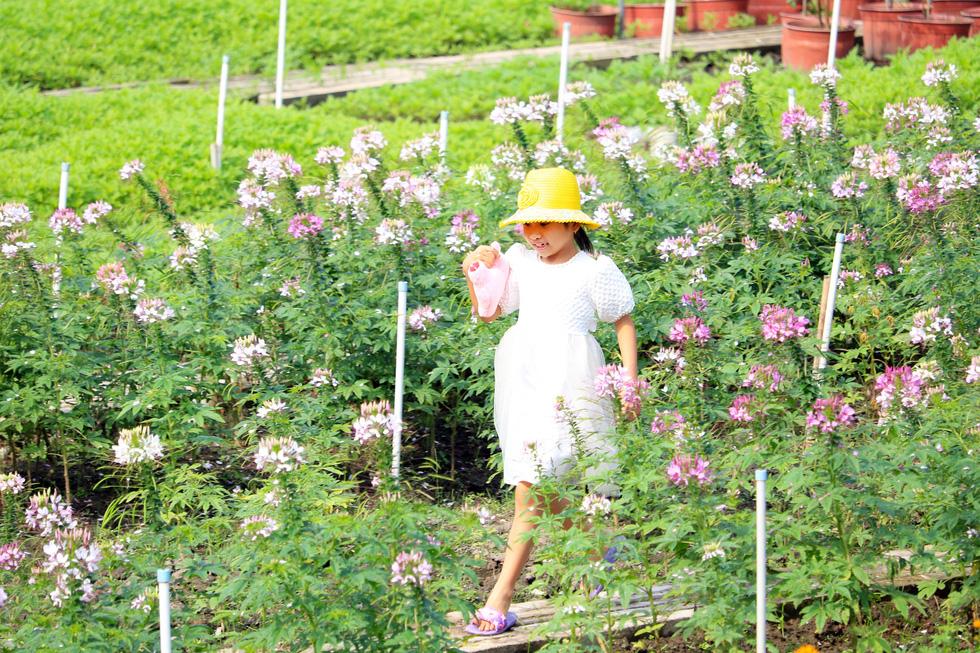A child visits a botanical garden in Ho Chi Minh City's Nhi Binh Ward.