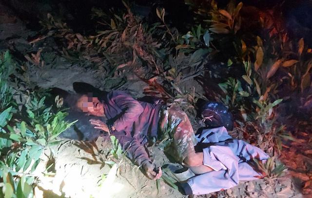 Vietnamese man suffers brain injury following suspected elephant attack