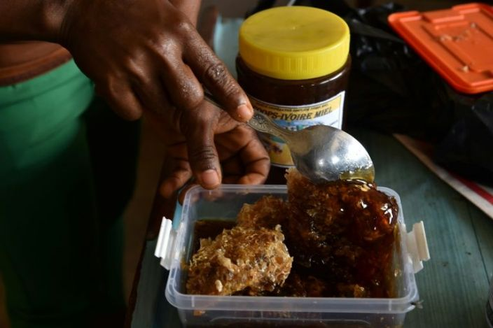 Hive thinking: Beekeeping makes a buzz in Ivory Coast