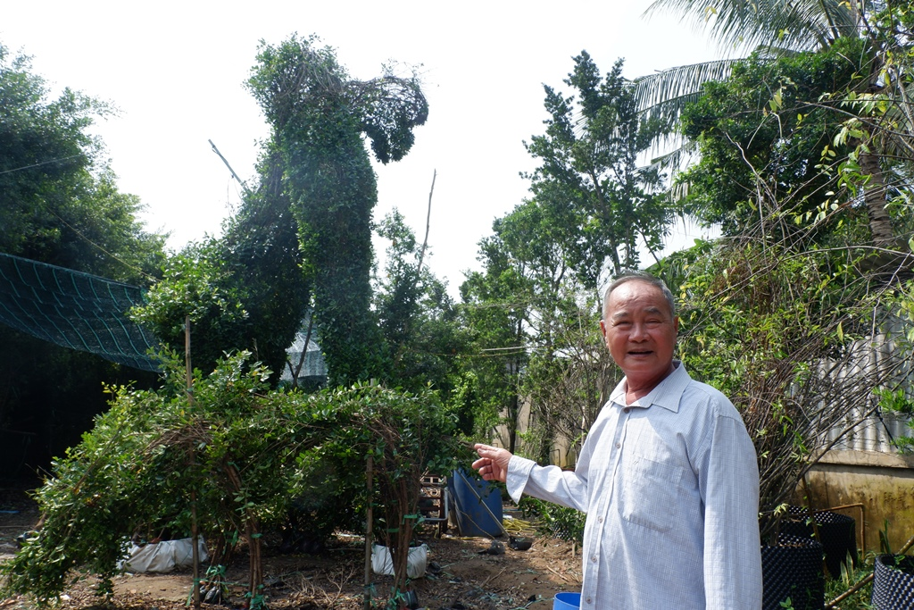 Meet the Mekong Delta's king of plant sculpting