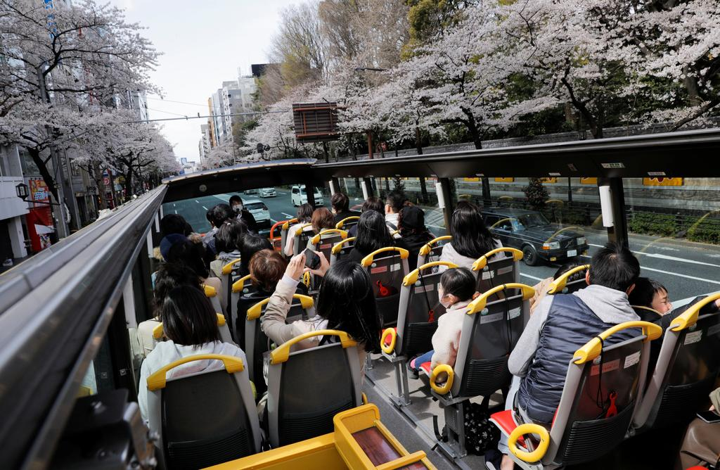 Passengers wearing protective face masks enjoy viewing blooming cherry blossoms from an open-top sightseeing bus, operated by Hato Bus Co., after Japan's government lifted the coronavirus disease (COVID-19) state of emergency in the Tokyo area, in Tokyo, Japan March 22, 2021. Photo: Reuters