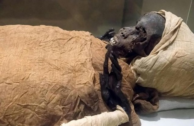 The mummified remains of Pharaoh Seqenenre Taa II, 'the Brave', who reigned over southern Egypt some 1,600 years before Christ, are the oldest of the 22 mummies being paraded through the streets of Cairo. Photo: AFP