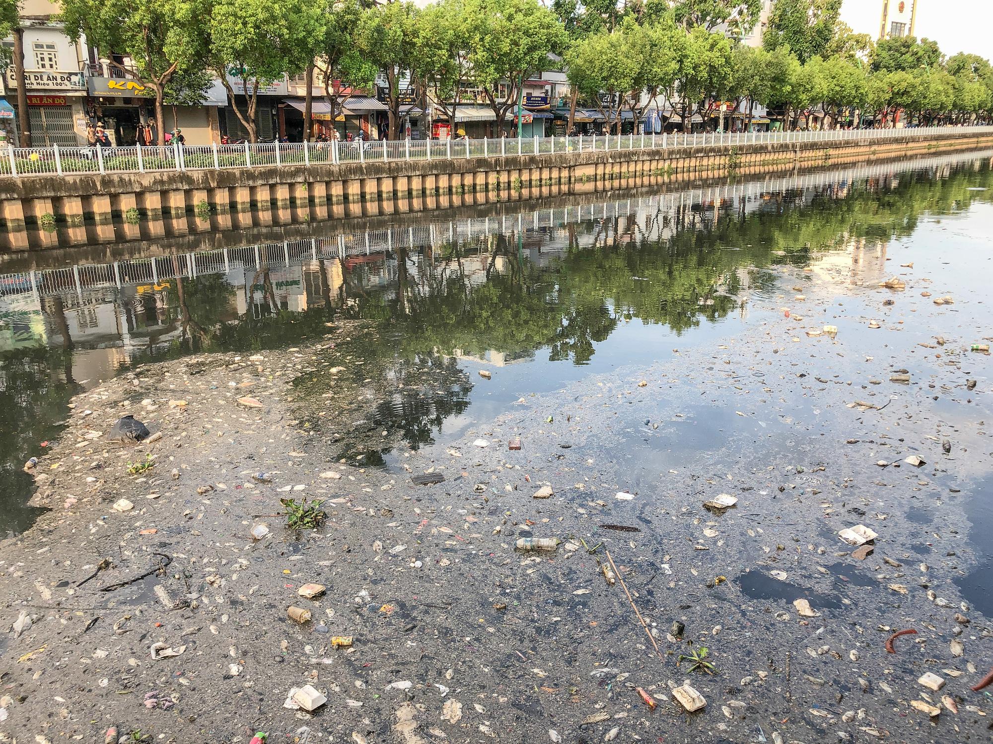 Fish die en masse in Ho Chi Minh City canal following unseasonal rain