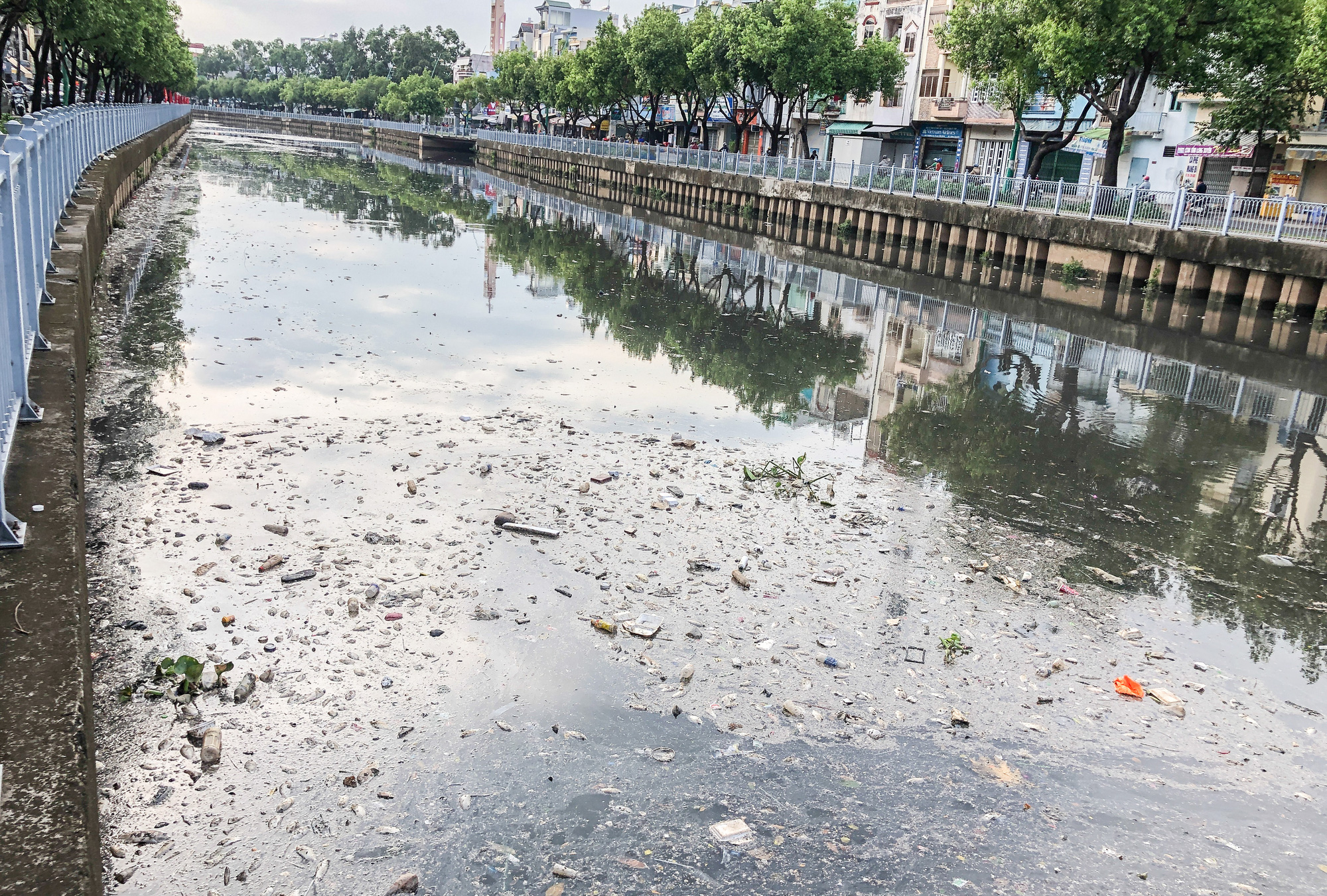 The mass fish death results in unpleasant smell along Nhieu Loc - Thi Nghe Canal in Ho Chi Minh City, April 4, 2021. Photo: Chau Tuan / Tuoi Tre