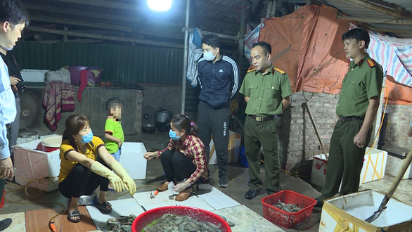 Food factory in Hanoi caught injecting prawns with filler before shipping