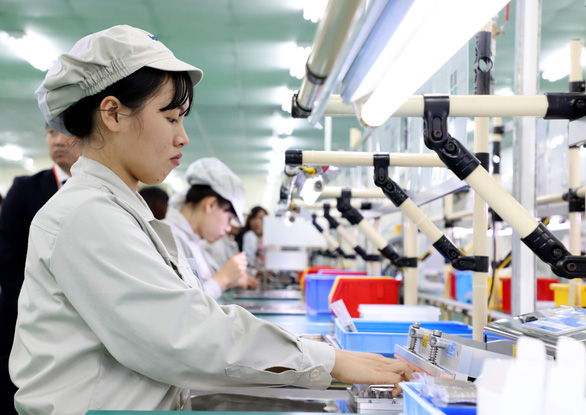 Young Vietnamese account for over 42% of unemployed workers: survey