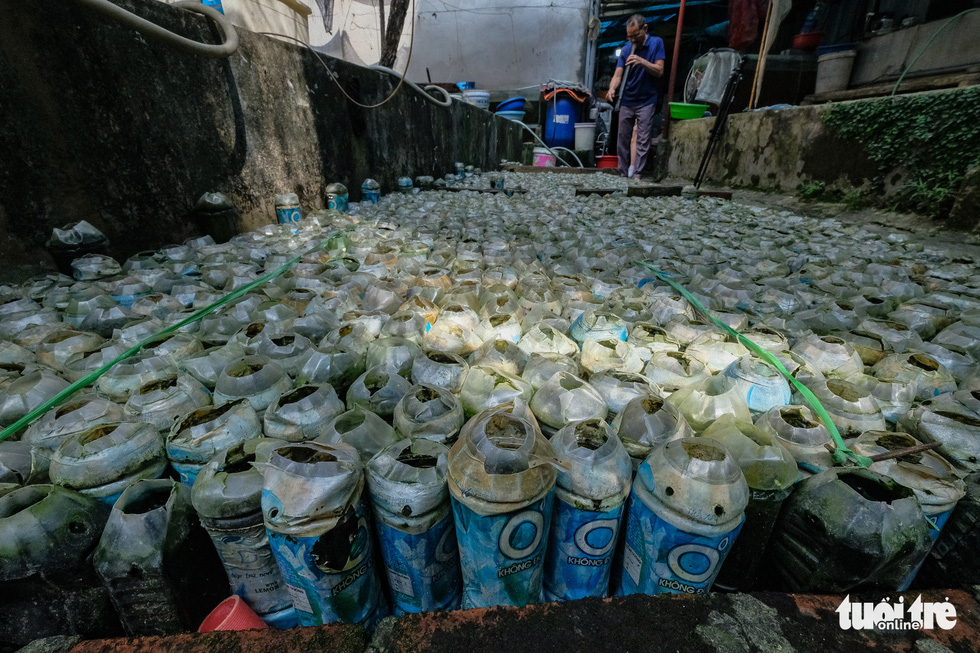Discarded plastic bottles are used as fish tanks in Tran Ngoc Thang's farm in Hanoi. Photo: Nam Tran / Tuoi Tre