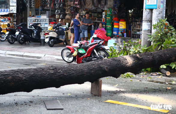 A motorbike is crushed by fallen trees on Nguyen Cong Tru Street in Nguyen Thai Binh Ward, District 1, Ho Chi Minh City, April 12, 2021. Photo: Minh Hoa / Tuoi Tre