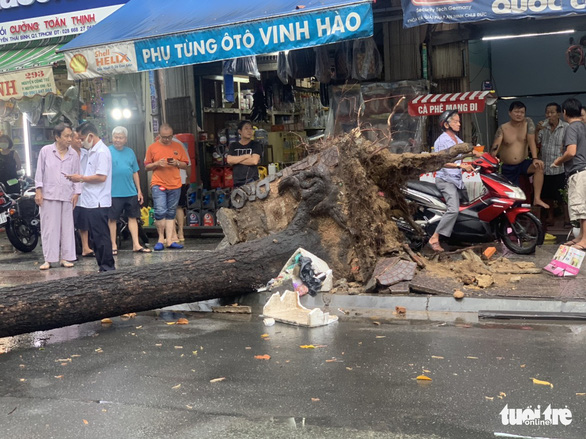 An uprooted tree on Nguyen Cong Tru Street in Nguyen Thai Binh Ward, District 1, Ho Chi Minh City, April 12, 2021. Photo: Minh Hoa / Tuoi Tre
