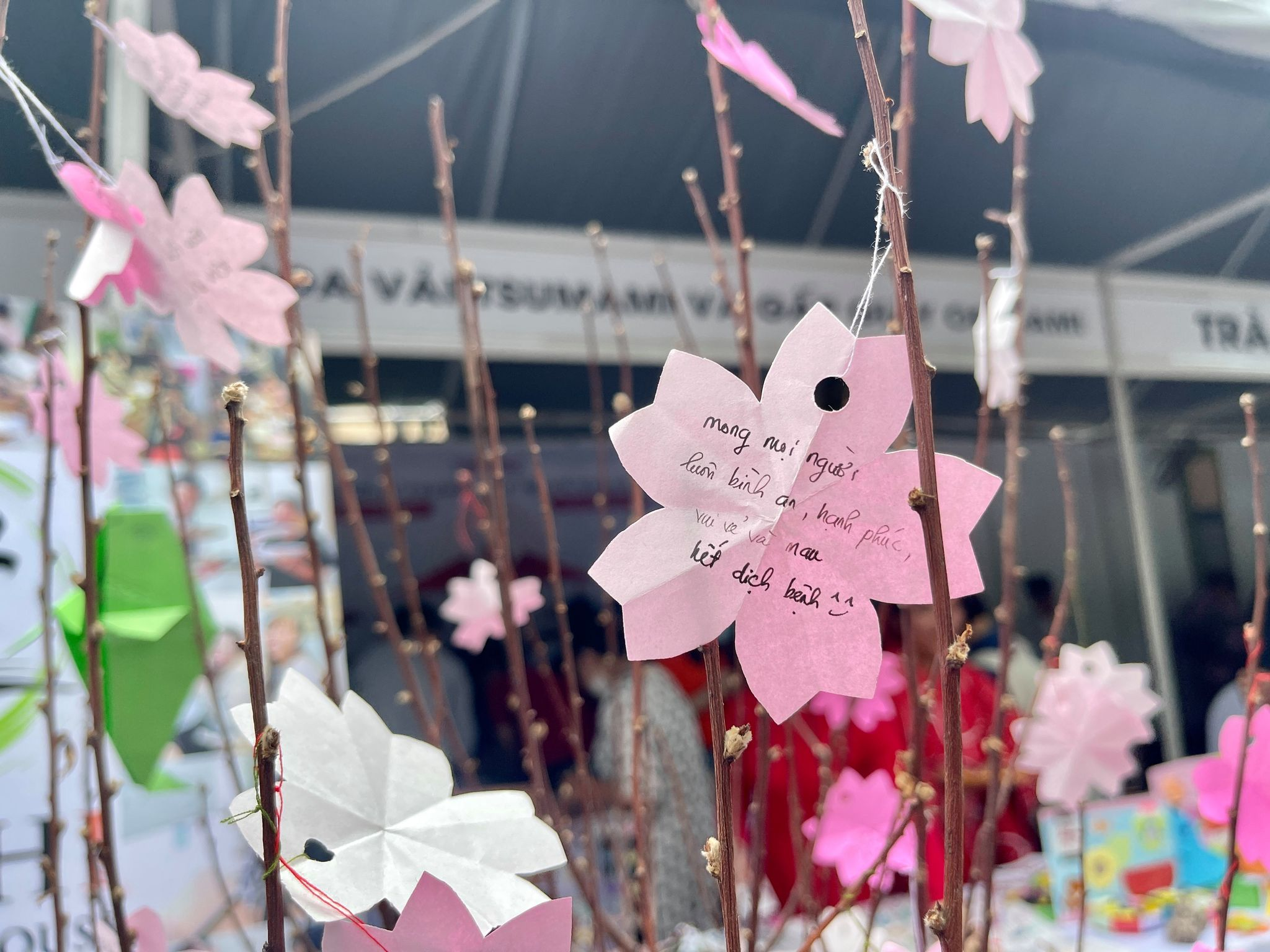 A paper flower displays a wish for 'everyone to be peaceful, happy, joyful and for the COVID-19 epidemic to be over' hung on a wishing tree in front of a booth at the Japan Vietnam Festival in Ho Chi Minh City on April 17, 2021. Photo: Dong Nguyen / Tuoi Tre News