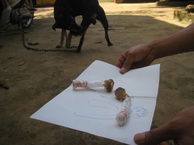 Four-year-old killed after mistaking dog poison for lollipop in Vietnam