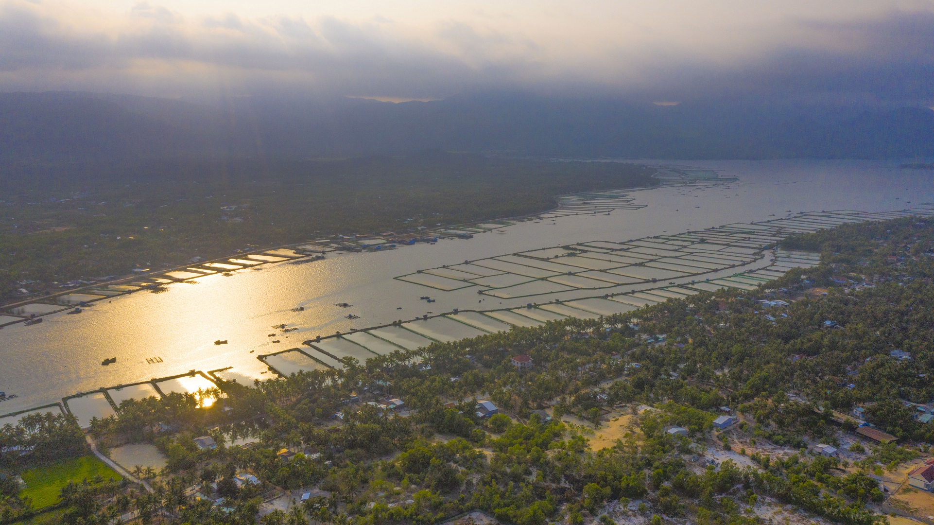 An aerial photo captures aquatic farms in the sunset in the central province of Phu Yen's Song Cau Town. Photo: Quang Dinh / Tuoi Tre News