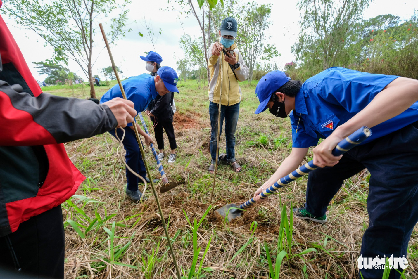 Members of the Ho Chi Minh Communist Youth Union's division in Lam Dong Province plant a tree at the launching ceremony of a mass planting project, Vietnam, April 23, 2021. Photo: Duc Tho / Tuoi Tre