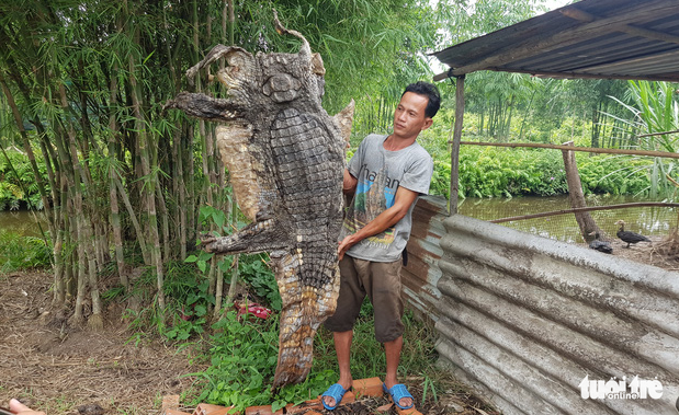 Vietnamese man skins, butchers 70kg crocodile after capturing it at his farmland