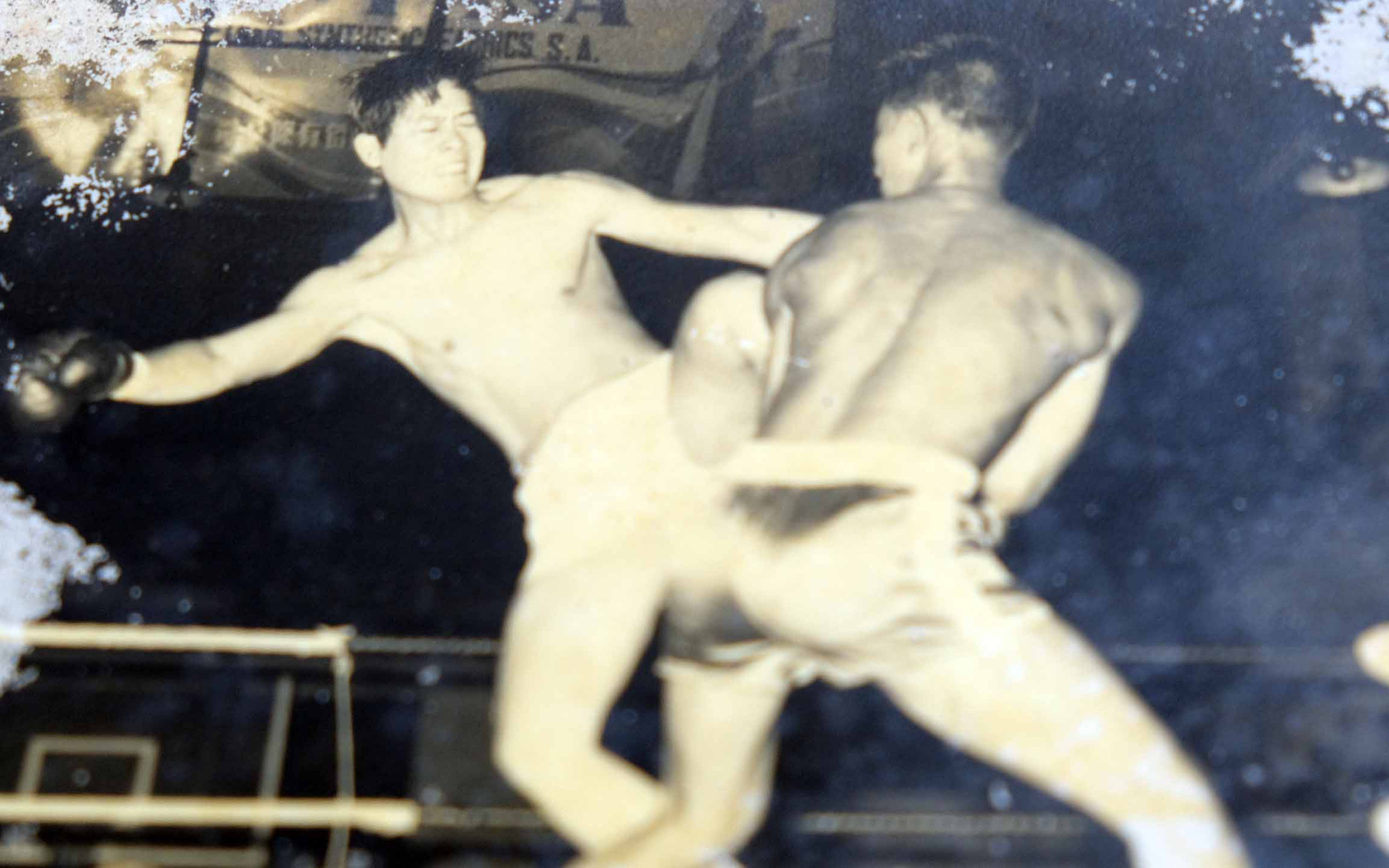 Fighting rings once popular public events in Vietnam's Mekong Delta