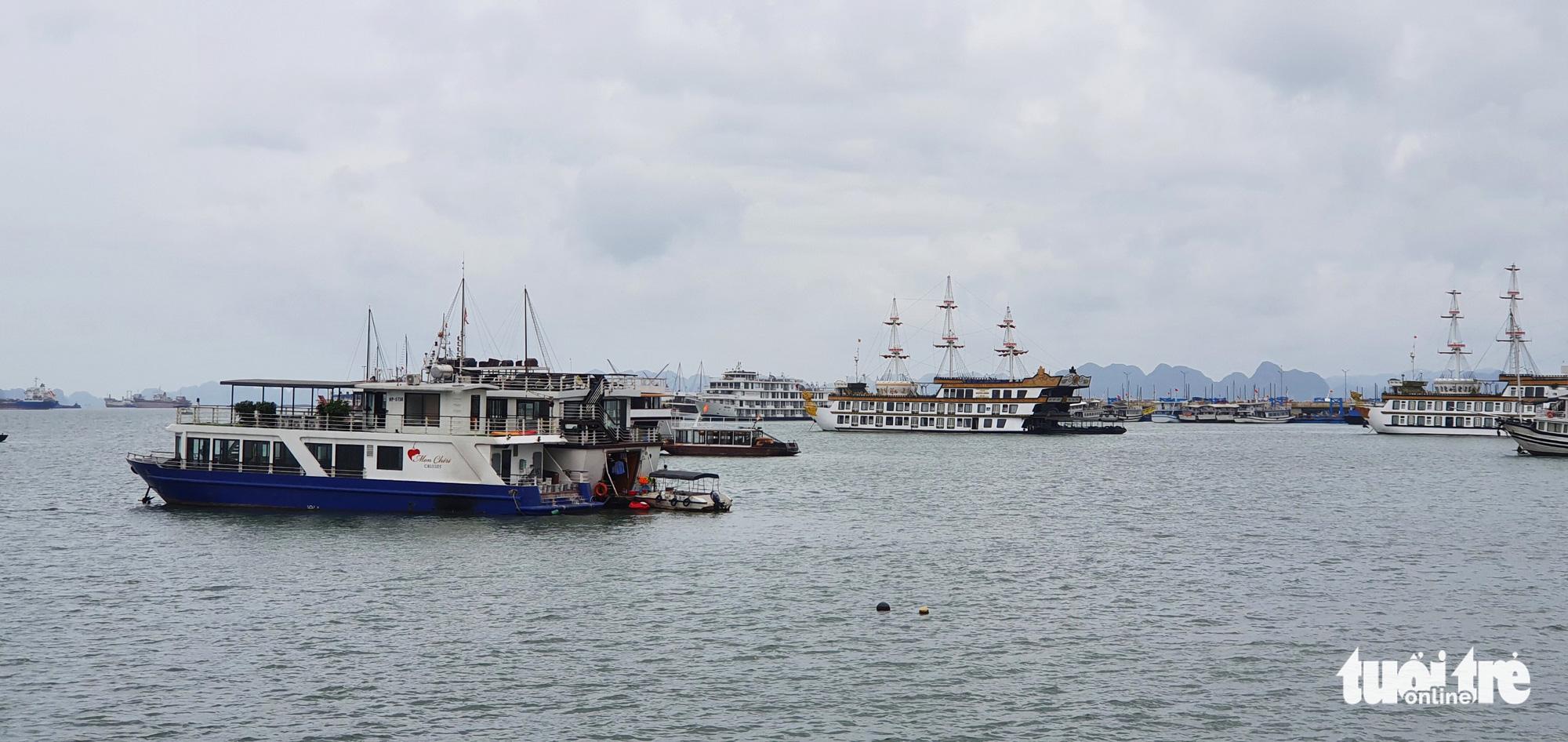 Vietnam's Quang Ninh, Hai Phong suspend tourism activities
