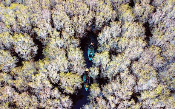 Deforestation threatens Vietnam's central scenic Ca Cai Lake