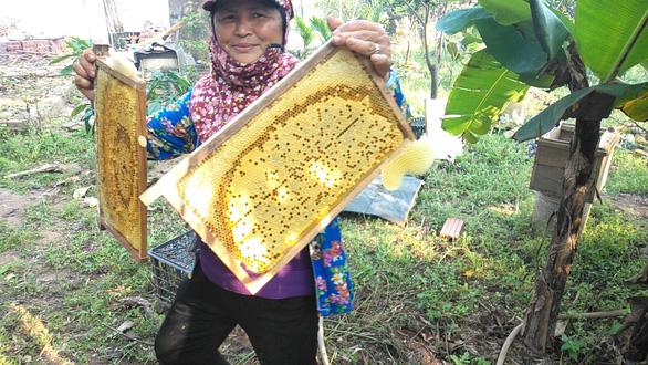 US plans to launch anti-dumping probe into Vietnamese honey