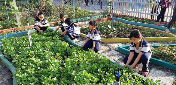 Ho Chi Minh City students learn by growing school gardens