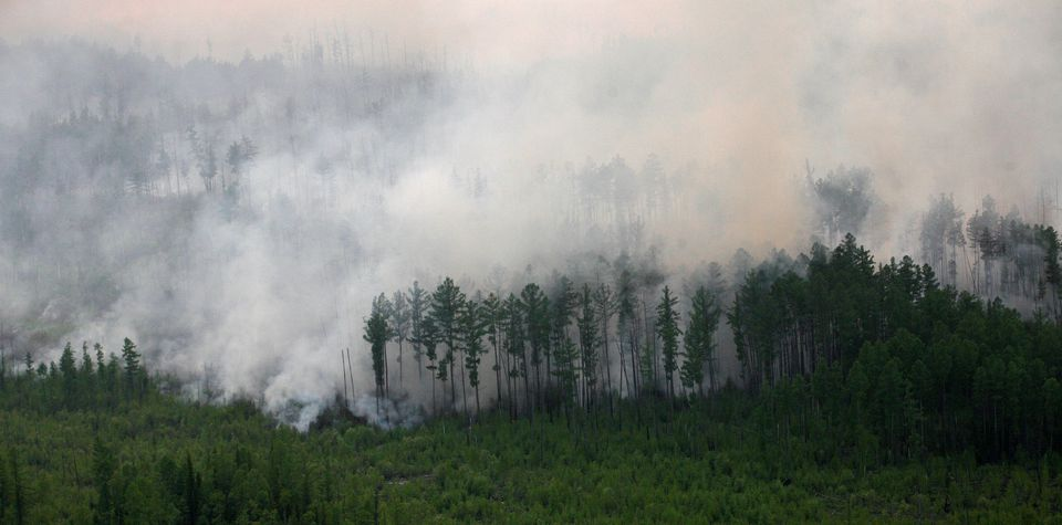 Arctic fires, thawing permafrost pose growing threat to climate: study