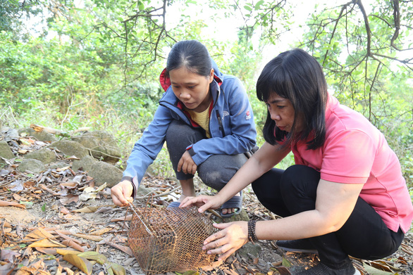 Two gentle souls dedicated to protecting Son Tra wildlife in Vietnam