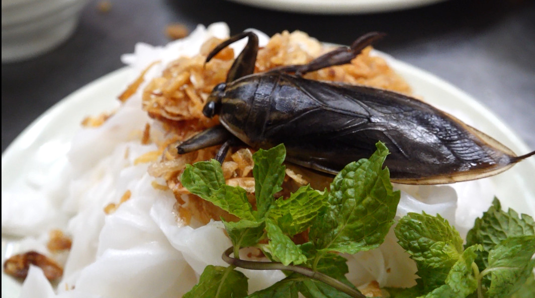 Bugs a delicacy in Hanoi's famous breakfast choice