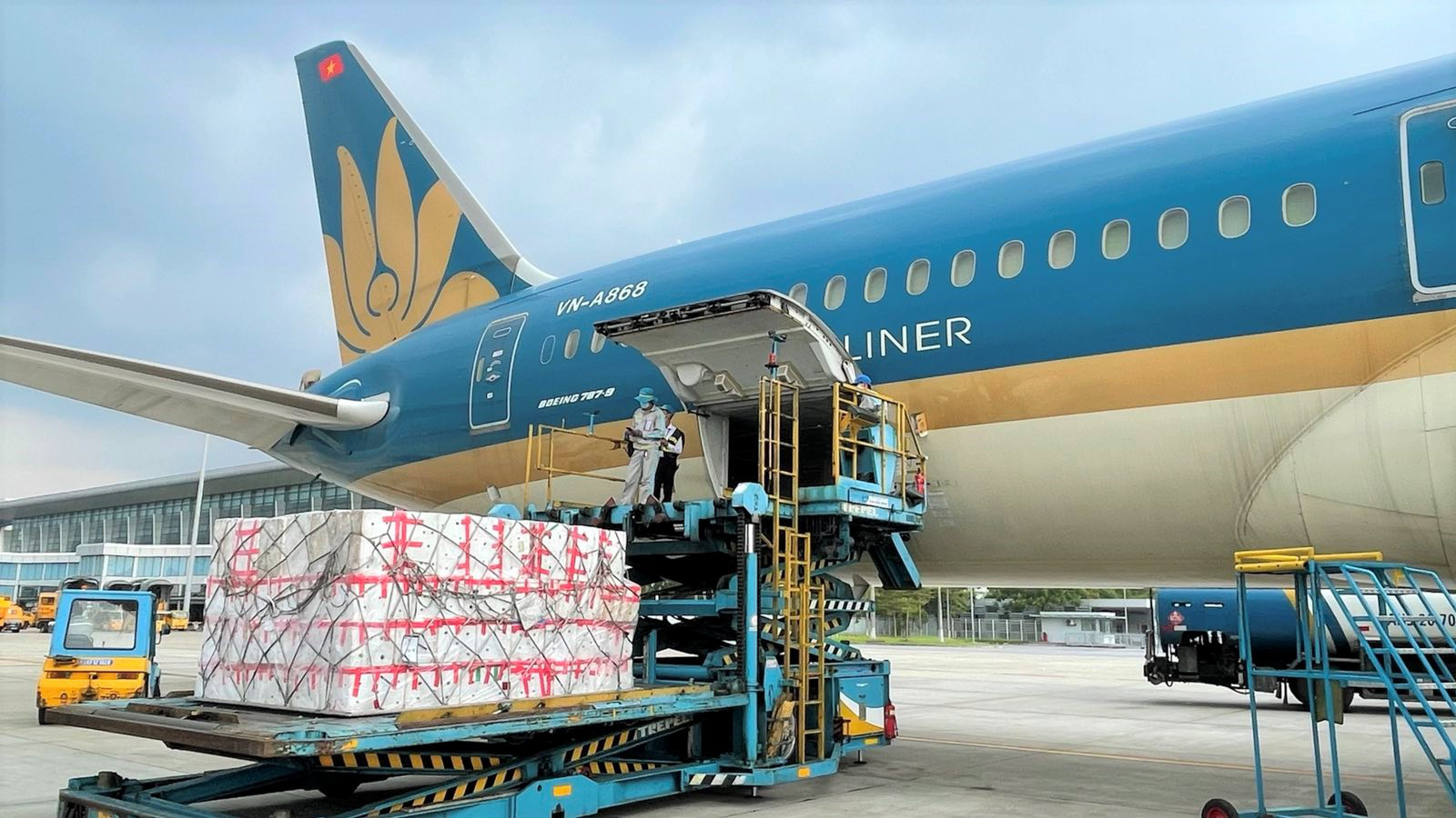 Vietnamese airlines shift to cargo transport amid COVID-19 pandemic