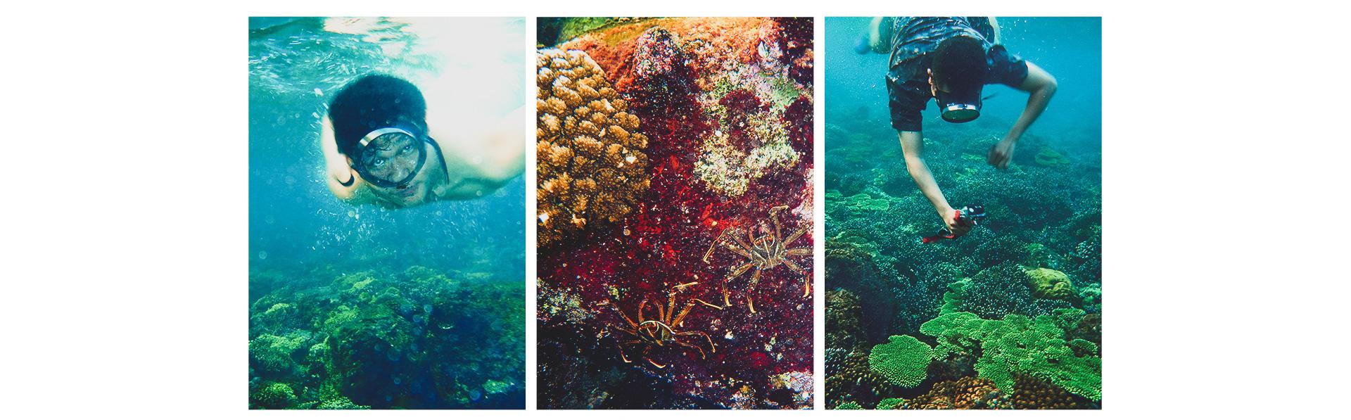 Tourists dive and view coral ranges in Con Co Island. Photo: The Kiet / Tuoi Tre