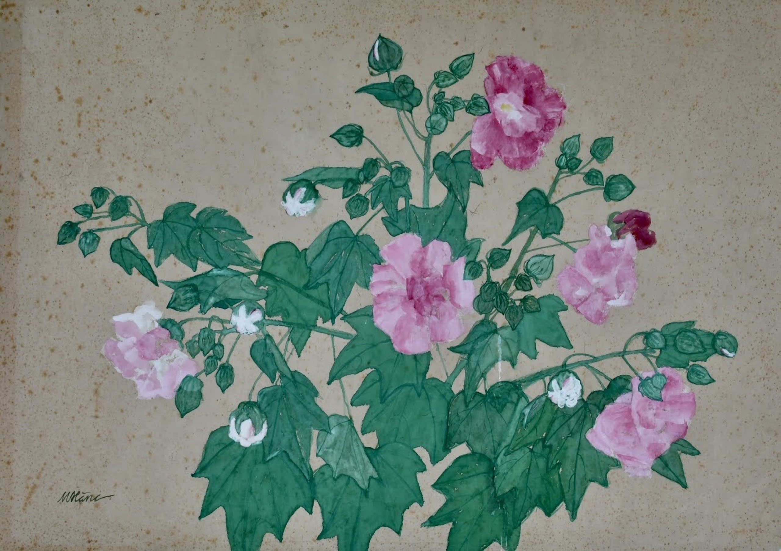 """Confederate Rose, painting on """"do"""" paper, 76cmx106cm by the artist Hoang Minh Hang in a supplied photo."""