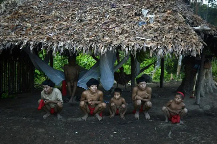 Brazil to deploy police to protect Yanomami from miners