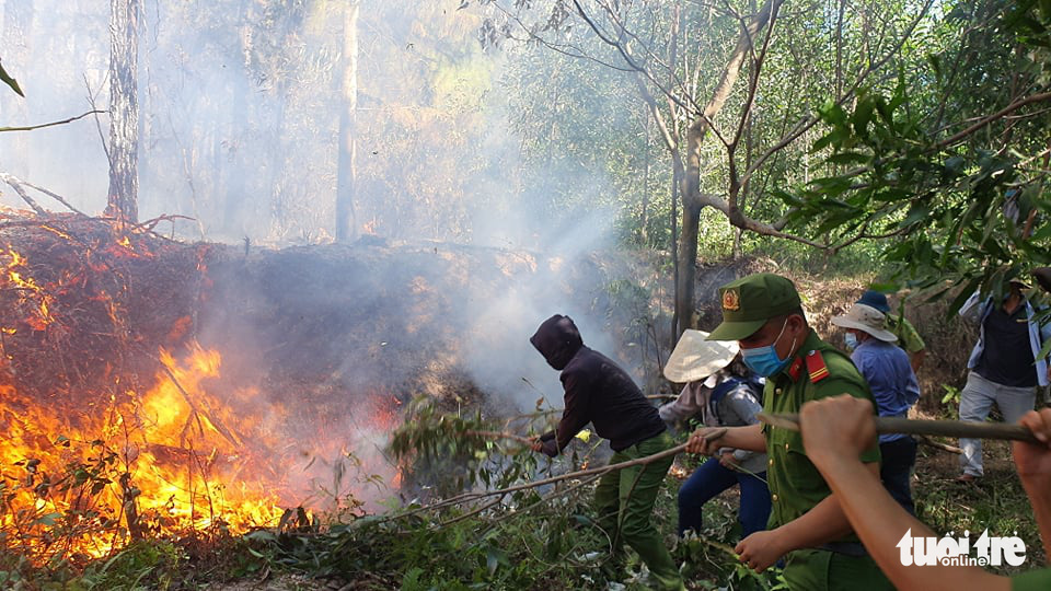 People use tree branches to put out a forest fire in Huong Thuy Town, Thua Thien-Hue Province, Vietnam, June 28, 2021. Photo: Phuoc Tuan / Tuoi Tre