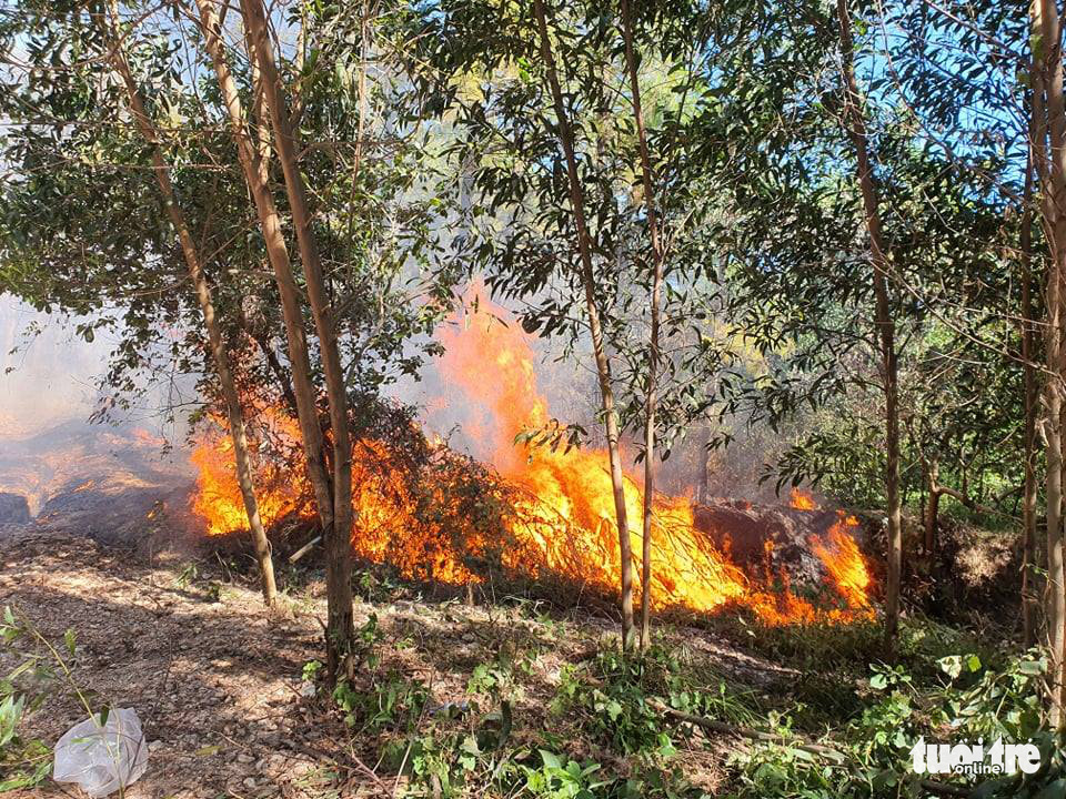 A forest fire in Huong Thuy Town, Thua Thien-Hue Province, Vietnam, June 28, 2021. Photo: Phuoc Tuan / Tuoi Tre