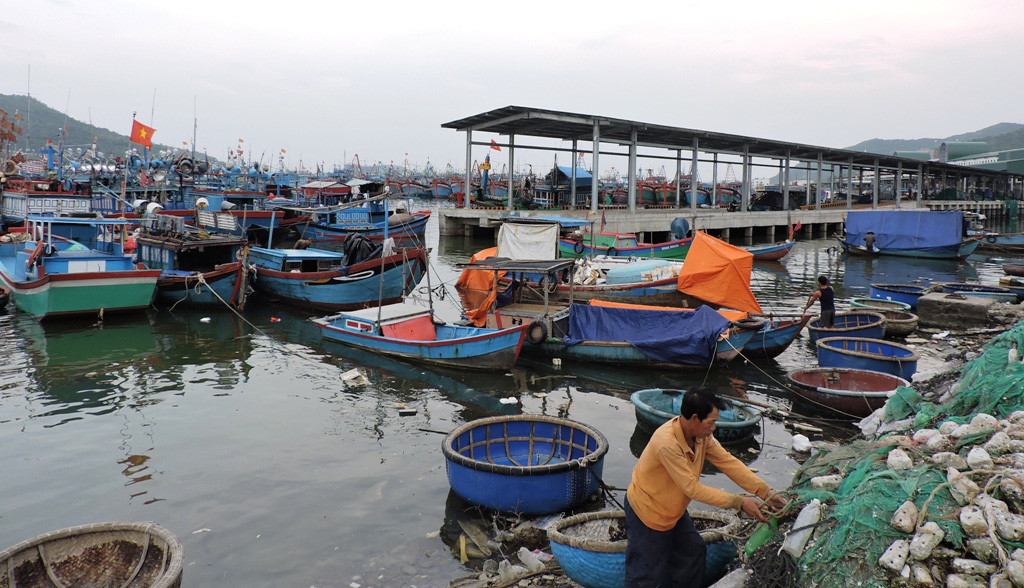 Vietnamese woman visits seafood market every day for a week before COVID-19 diagnosis