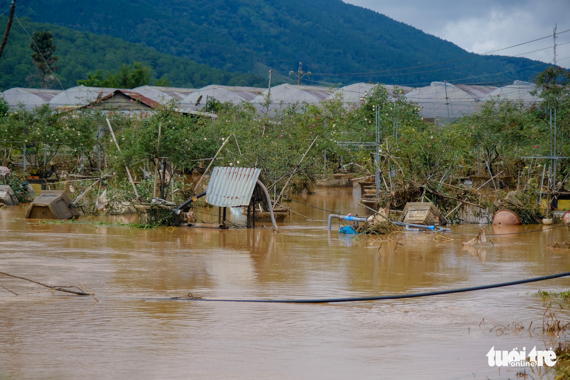 Greenhouses growing vegetables are flooded in rising water in Duc Trong District, Lam Dong Province, Vietnam, July 9, 2021. Photo: M. Vinh / Tuoi Tre