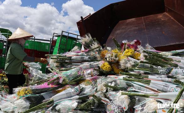 Opposing herbicide regulations between Vietnam and Australia turn huge Da Lat flower shipments into fertilizer
