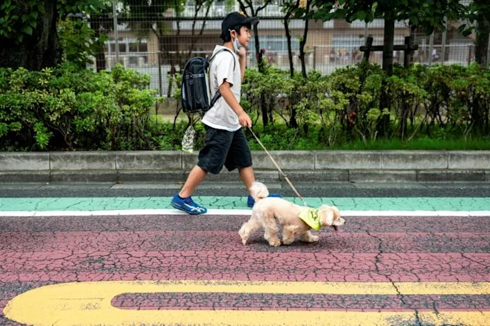 Tokyo's neighborhood watch pooches are wagging away crime and cuddling away fear. Photo: AFP