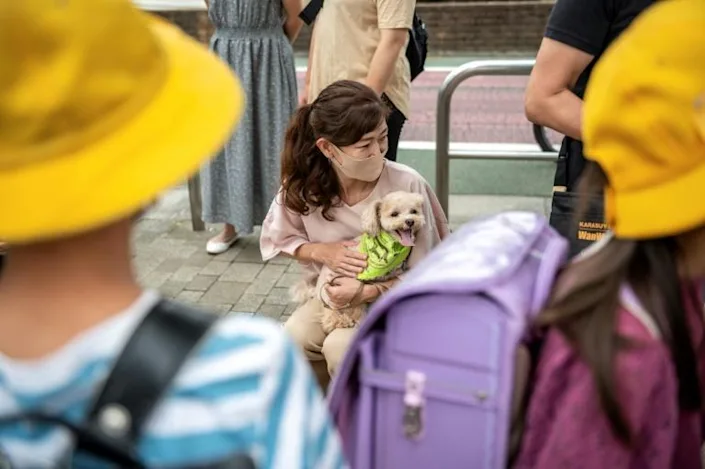 Residents of Tokyo's Karasuyama are grateful for the security and cuddles provided by their canine protectors. Photo: AFP