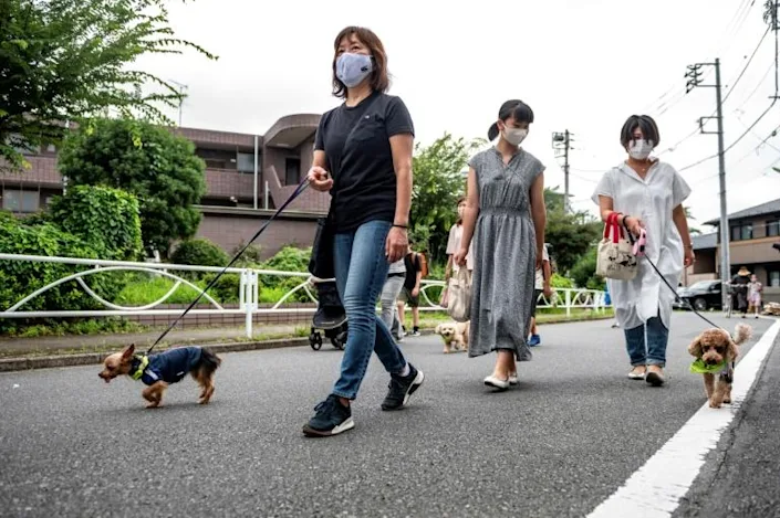 Some 150 pups form the Wan-Wan Patrol, a program that enlists dogs and their owners to turn their daily walks into a neighborhood watch. Photo: AFP