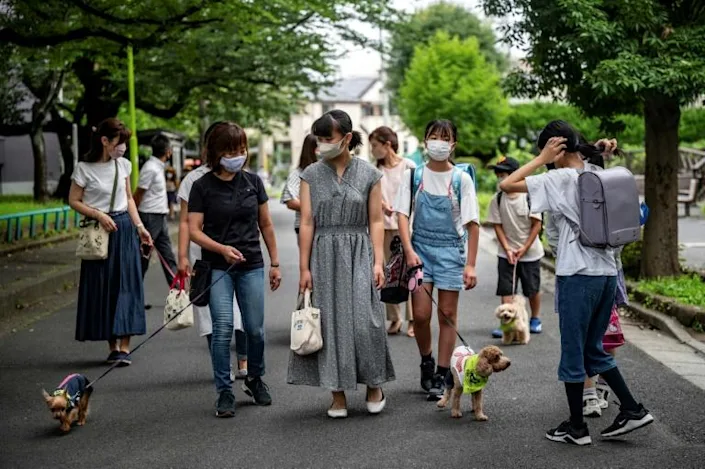 Many of the dog owners are parents of current and former students of the local school, but others just participate in the community watch as residents. Photo: AFP