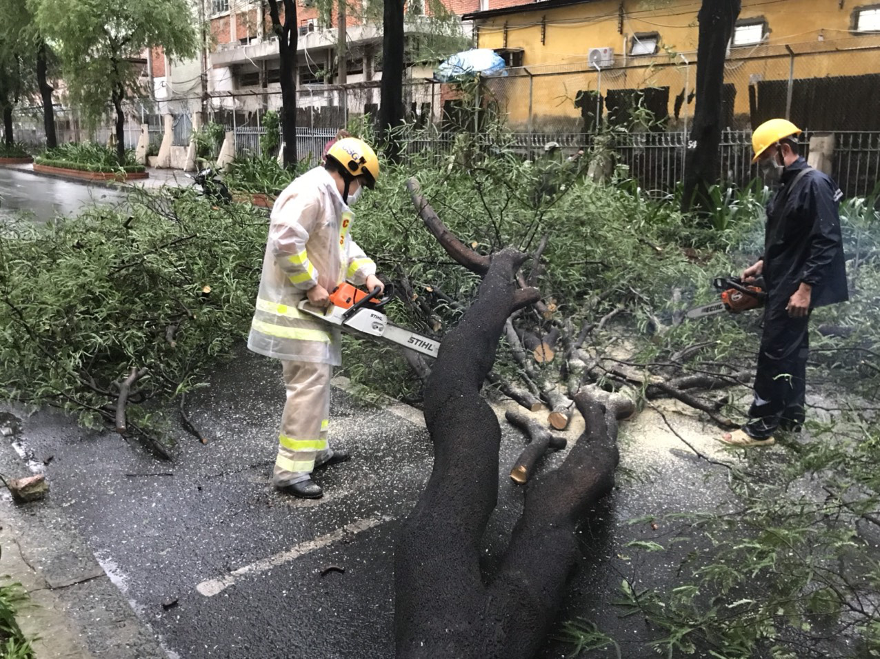 Officers deal with an uprooted tree on Ly Tu Trong Street in District 1, Ho Chi Minh City, July 19, 2021. Photo: Dan Thuan / Tuoi Tre