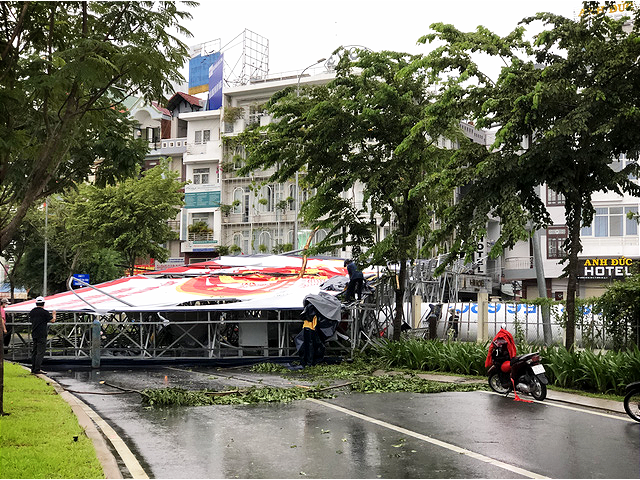Downpour, powerful gusts knock down trees, billboard in Ho Chi Minh City