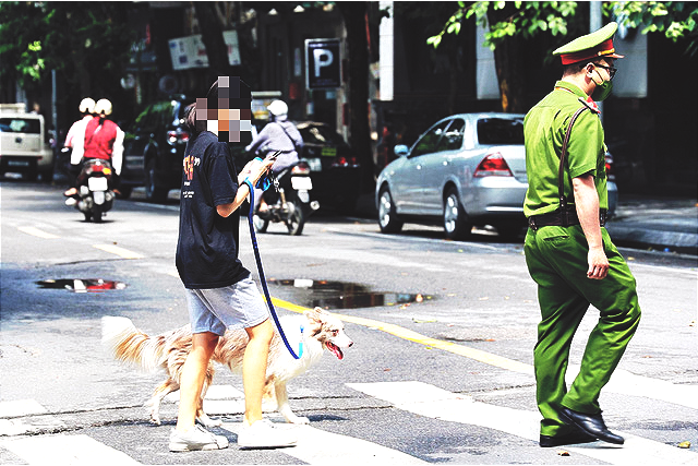 Hanoi woman fined for walking dog during extensive social distancing drive