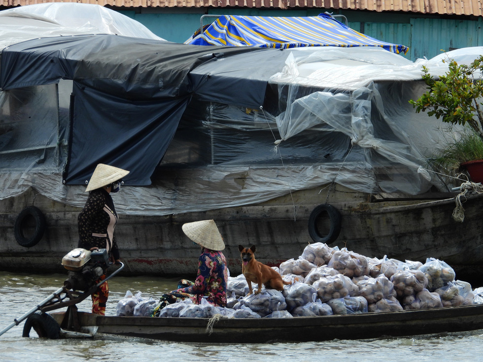 A boat full of products waits for customers at the Cai Rang Floating Market in Can Tho City, Vietnam, August 9, 2021. Photo: Tien Trinh / Tuoi Tre