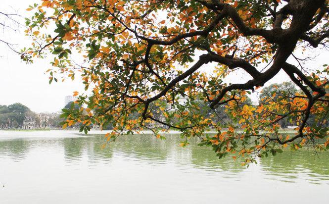 Autumn is calling in Vietnam