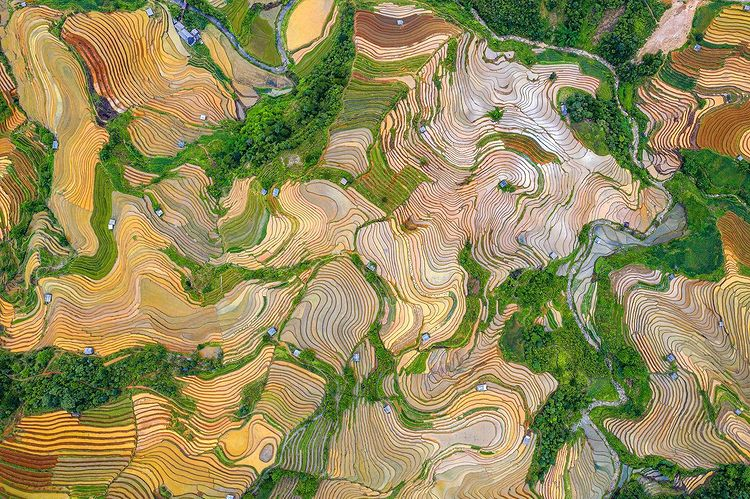 'Is it a painting? No, it's an aerial view of rice terraces in the northern mountains of Vietnam during water season.' Photo and words by the_prabster