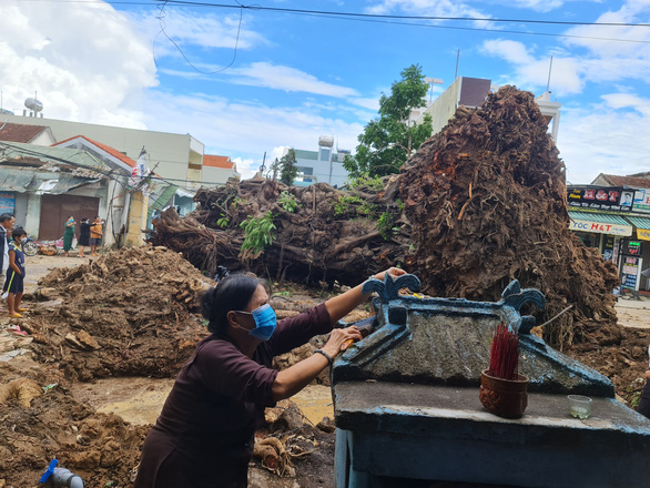 In central Vietnam, centuries-old banyan tree relocated after fatally crushing passer-by