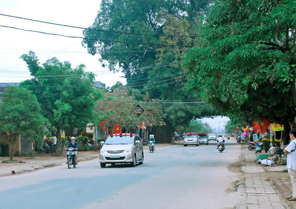 The 200-year-old banyan tree in Quang Ngai City is seen before it toppled on September 21, 2021. Photo: Duong Thanh Danh